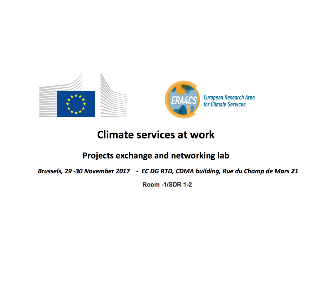 Climate services at work – Projects exchange and networking lab
